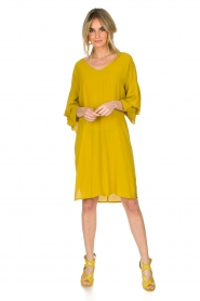 Aaiko |  Dress Key West | yellow  | Picture 3