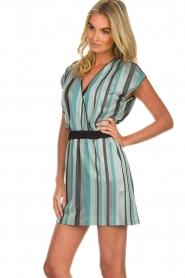 Atos Lombardini | Gestreepte jurk Fenna | blauw  | Afbeelding 5