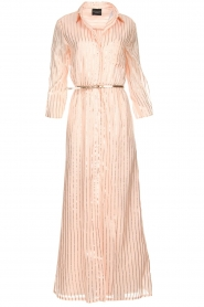 Atos Lombardini |  Maxi dress with glitter stripes Nadina | nude  | Picture 1