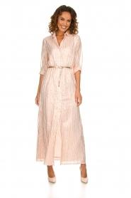Atos Lombardini |  Maxi dress with glitter stripes Nadina | nude  | Picture 2