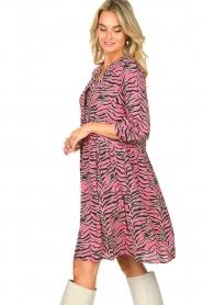Set |  Zebra print dress Polly | pink  | Picture 6