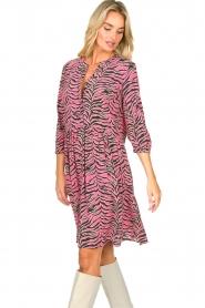 Set |  Zebra print dress Polly | pink  | Picture 5