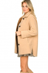 Set |  Teddy coat Moby | brown  | Picture 5