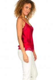 Gold Hawk |  Silk top Elin | red  | Picture 4