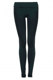 Sportlegging Refined Long Leg | blauw