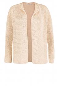 Aaiko |  Crochet cardigan Tiziana | beige  | Picture 1