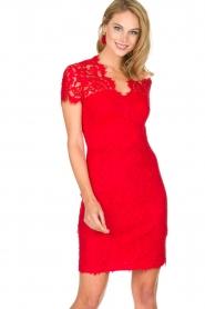 Set | Kanten jurk Belle | rood  | Afbeelding 2