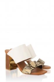 Lola Cruz | Leren sandaal Ema | multi  | Afbeelding 3