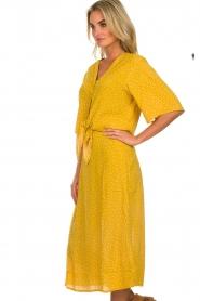 Des Petits Hauts |  Polkadot blouse Espelette | yellow  | Picture 4
