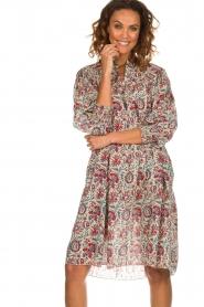 Antik Batik |  Printed cotton dress Betsie | multi  | Picture 4