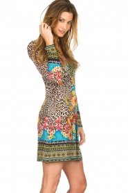 Hale Bob |  Dress Lucy | nude  | Picture 5