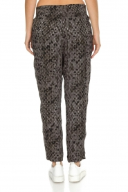 IRO |  Trousers Clonie | Grey  | Picture 5