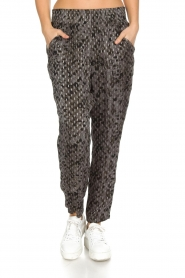 IRO |  Trousers Clonie | Grey  | Picture 2
