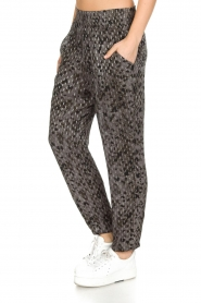 IRO |  Trousers Clonie | Grey  | Picture 4