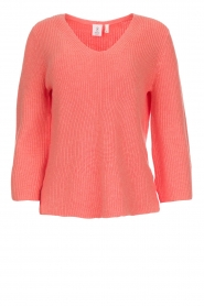 Knit-ted |  Sweater with V-neck Leonie | oranje  | Picture 1