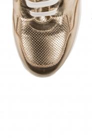 SVNTY | Sneaker Julia | goud  | Afbeelding 6