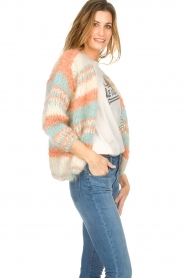 Les tricots d'o | Wollen vest Haley | naturel   | Afbeelding 4