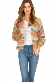 Les tricots d'o |  Wool cardigan Lene | multi  | Picture 2