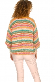 Les tricots d'o |  Wool cardigan Lene | multi  | Picture 6