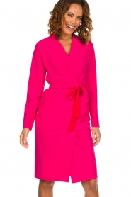 D-ETOILES CASIOPE |  Wrinkle free stretch dress Rien | pink  | Picture 2