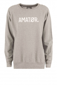 Logo sweater Amator | grijs