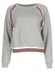 Hunkydory | Sweatshirt Delta | grijs  | Afbeelding 1