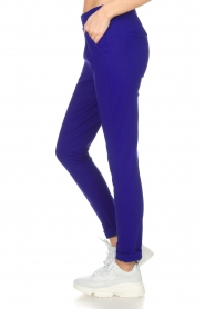D-ETOILES CASIOPE |  Wrinkle free stretch trousers Rover | purple  | Picture 4