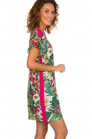 Kocca    Dress with print Kristin   multi    Picture 5