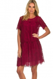 Fracomina |  Embroidery dress Tilda | wine red  | Picture 4