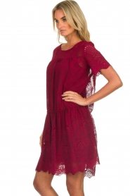 Fracomina |  Embroidery dress Tilda | wine red  | Picture 5