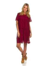 Fracomina |  Embroidery dress Tilda | wine red  | Picture 3