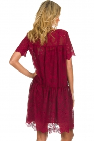 Fracomina |  Embroidery dress Tilda | wine red  | Picture 6