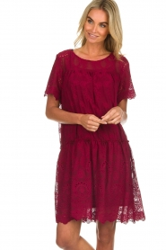 Fracomina |  Embroidery dress Tilda | wine red  | Picture 2