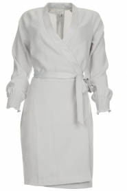 Dante 6 |  Wrap dress Ilyia | light grey  | Picture 1