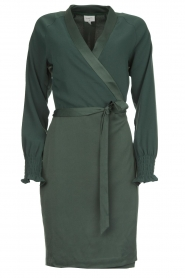 Dante 6 |  Wrap dress Ilya | green  | Picture 1
