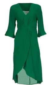 Dante 6 |  Dress with pleat detail Naomi | green  | Picture 1