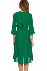 Dante 6 |  Dress with pleat detail Naomi | green  | Picture 6