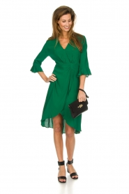 Dante 6 |  Dress with pleat detail Naomi | green  | Picture 3