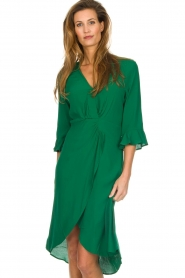 Dante 6 |  Dress with pleat detail Naomi | green  | Picture 2