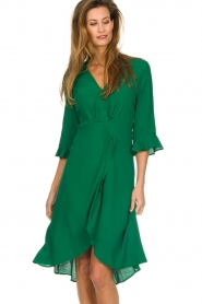 Dante 6 |  Dress with pleat detail Naomi | green  | Picture 4