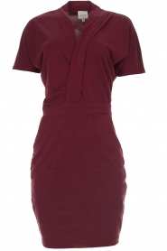Dante 6 |  Dress with wrap detail Fairmont | red   | Picture 1