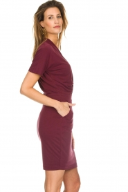 Dante 6 |  Dress with wrap detail Fairmont | red   | Picture 4
