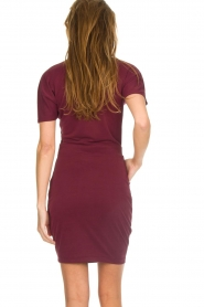 Dante 6 |  Dress with wrap detail Fairmont | red   | Picture 5