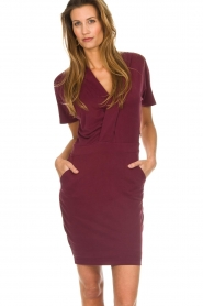 Dante 6 |  Dress with wrap detail Fairmont | red   | Picture 2