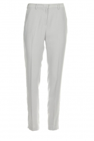 Dante 6 |  Trousers Sigourny | grey  | Picture 1