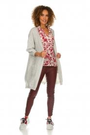 Dante 6 |  Leather pants with lace-up details Addict | bordeaux  | Picture 2