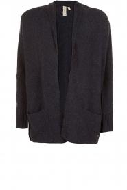 Knit-ted | Wollen vest Meis | blauw  | Afbeelding 1