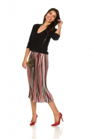 Aaiko |  Striped plisse skirt Philou | multi  | Picture 3