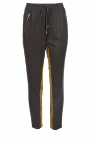 Aaiko |  Sweatpants with lurex finish Lines | grey  | Picture 1