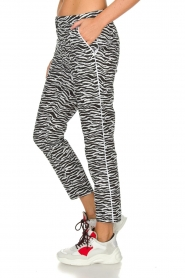 Aaiko |  Zebra print trousers Parien | black  | Picture 4